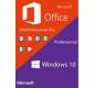 Microsoft Windows 10 Pro + Office 2019