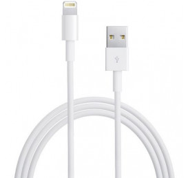 Cable Lightning USB iPhone/iPad 1,5m