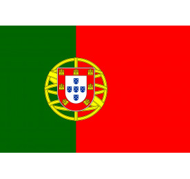 Cambio de idioma a portugues