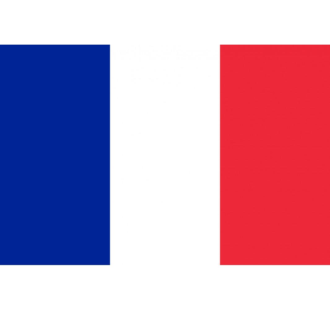 Cambio de idioma a francés